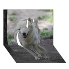 White Wolf Apple 3d Greeting Card (7x5)