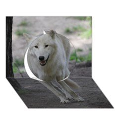 White Wolf Circle 3D Greeting Card (7x5)