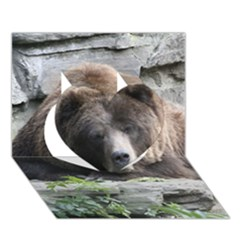Tired Bear Heart 3d Greeting Card (7x5)