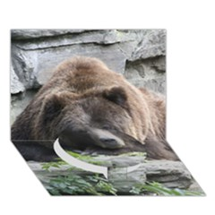 Tired Bear Circle Bottom 3D Greeting Card (7x5)