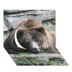 Tired Bear Circle 3D Greeting Card (7x5)