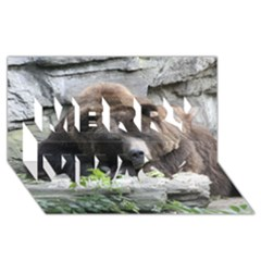 Tired Bear Merry Xmas 3d Greeting Card (8x4)