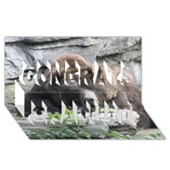 Tired Bear Congrats Graduate 3d Greeting Card (8x4)