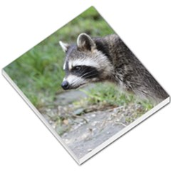 Racoon 1115 Small Memo Pads
