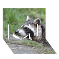Racoon 1115 I Love You 3D Greeting Card (7x5)