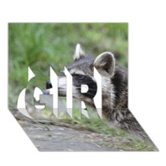 Racoon 1115 Girl 3d Greeting Card (7x5)