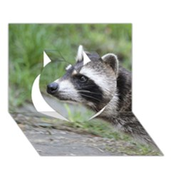 Racoon 1115 Heart 3d Greeting Card (7x5)