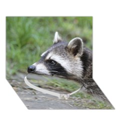Racoon 1115 Heart Bottom 3D Greeting Card (7x5)