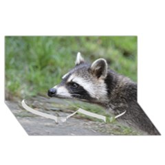 Racoon 1115 Twin Heart Bottom 3D Greeting Card (8x4)
