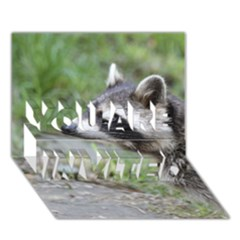 Racoon 1115 YOU ARE INVITED 3D Greeting Card (7x5)