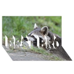 Racoon 1115 BEST BRO 3D Greeting Card (8x4)