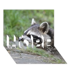 Racoon 1115 Hope 3d Greeting Card (7x5)