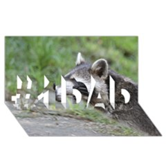 Racoon 1115 #1 Dad 3d Greeting Card (8x4)