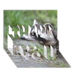 Racoon 1115 THANK YOU 3D Greeting Card (7x5)