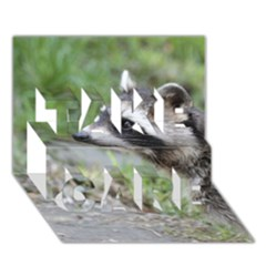 Racoon 1115 Take Care 3d Greeting Card (7x5)