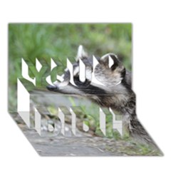 Racoon 1115 You Did It 3d Greeting Card (7x5)