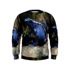 Blue Poison Arrow Frog Boys  Sweatshirts
