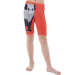 Funny Music Lover Ferret Kid s Mid Length Swim Shorts
