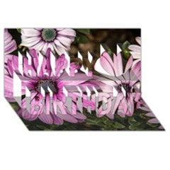 Beautiful Colourful African Daisies  Happy Birthday 3d Greeting Card (8x4)