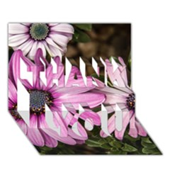 Beautiful Colourful African Daisies  THANK YOU 3D Greeting Card (7x5)