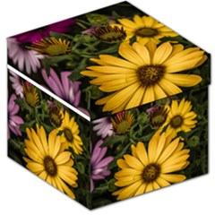 Beautiful Colourful African Daisies  Storage Stool 12
