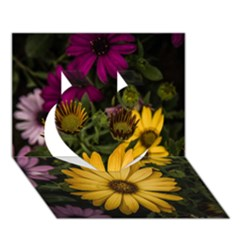 Beautiful Colourful African Daisies  Heart 3d Greeting Card (7x5)