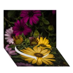 Beautiful Colourful African Daisies  Heart Bottom 3D Greeting Card (7x5)