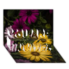 Beautiful Colourful African Daisies  You Are Invited 3d Greeting Card (7x5)