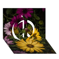 Beautiful Colourful African Daisies  Peace Sign 3D Greeting Card (7x5)