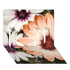 Beautiful Colourful African Daisies I Love You 3d Greeting Card (7x5)