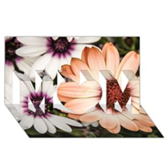 Beautiful Colourful African Daisies MOM 3D Greeting Card (8x4)