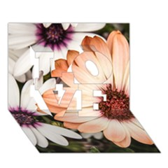 Beautiful Colourful African Daisies LOVE 3D Greeting Card (7x5)