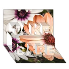 Beautiful Colourful African Daisies Take Care 3d Greeting Card (7x5)