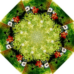 Awesome Flowers And Lleaves With Dragonflies On Red Green Background With Grunge Straight Umbrellas