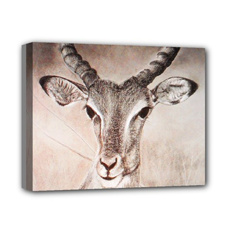 Antelope horns Deluxe Canvas 14  x 11