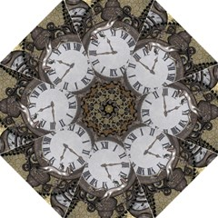 Steampunk, Awesome Clocks With Gears, Can You See The Cute Gescko Hook Handle Umbrellas (Medium)