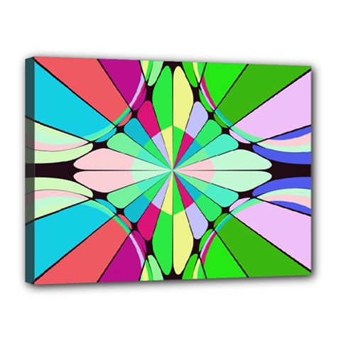 Distorted flower Canvas 16  x 12  (Stretched)