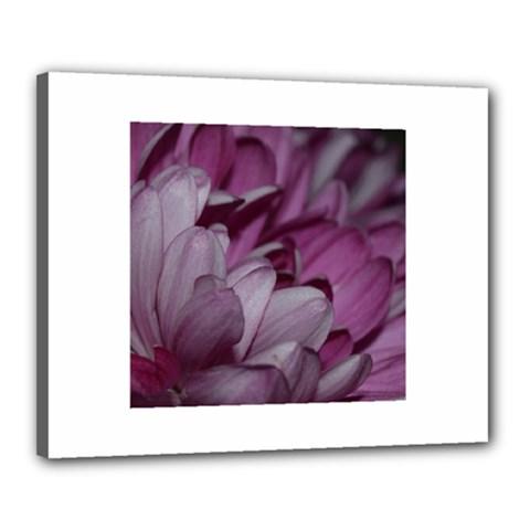 Purple! Canvas 20  x 16