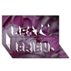 Purple! Best Friends 3D Greeting Card (8x4)