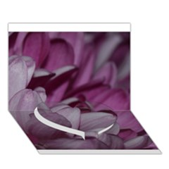 Purple! Heart Bottom 3D Greeting Card (7x5)