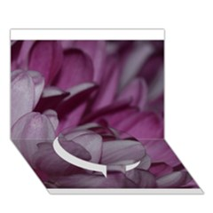 Purple! Circle Bottom 3D Greeting Card (7x5)