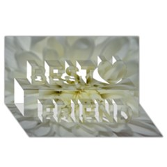 White Flowers Best Friends 3D Greeting Card (8x4)