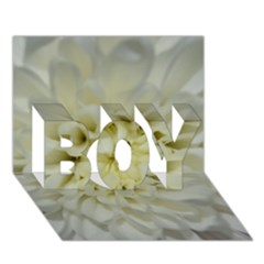 White Flowers BOY 3D Greeting Card (7x5)