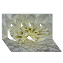 White Flowers Twin Hearts 3D Greeting Card (8x4)