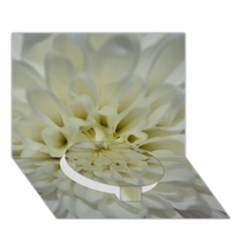 White Flowers Circle Bottom 3D Greeting Card (7x5)