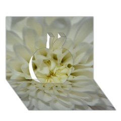 White Flowers Apple 3D Greeting Card (7x5)