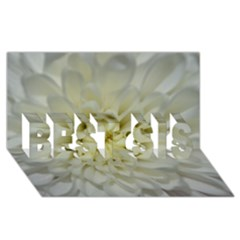White Flowers BEST SIS 3D Greeting Card (8x4)
