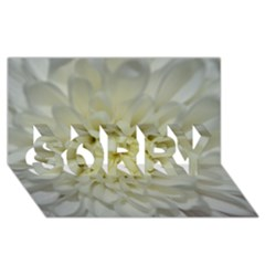 White Flowers SORRY 3D Greeting Card (8x4)