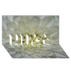 White Flowers HUGS 3D Greeting Card (8x4)