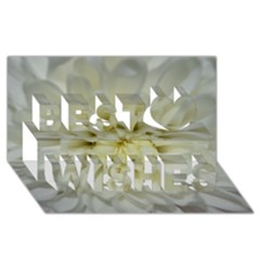 White Flowers Best Wish 3D Greeting Card (8x4)